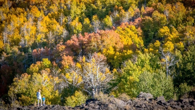 Eastern Sierra: 'Peak Fall' on Fast Approach
