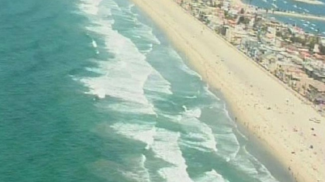Shark Sighting Prompts Mission Beach Closure