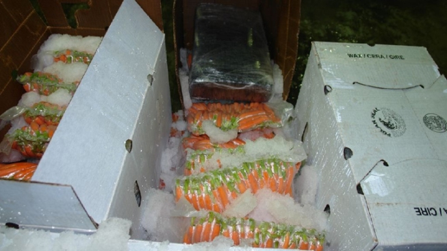 310 Pounds of Pot Found Hidden Inside Boxes of Carrots