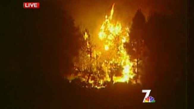 Tree Fire Sparks in San Marcos
