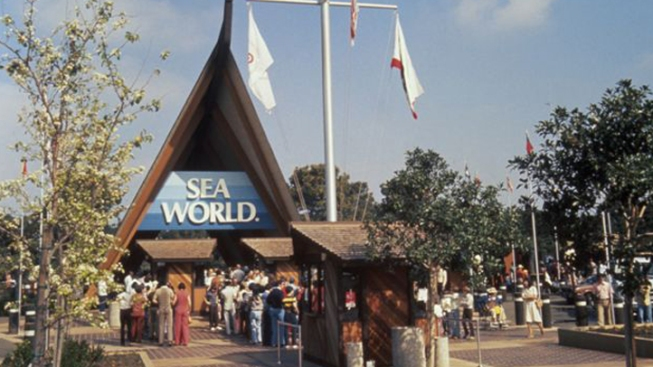 SeaWorld Celebrates Its 48th Anniversary