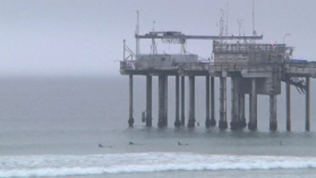 Young Woman's Body Found Floating Near Scripps Pier