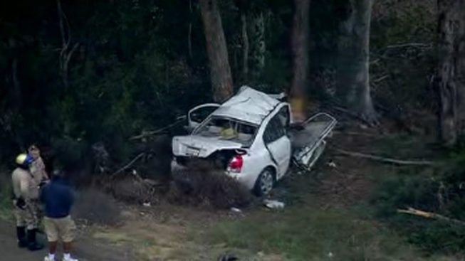 Driver Killed After Slamming Into Trees