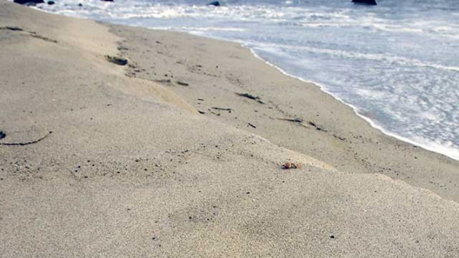Beach Sand Replenishment Project Begins