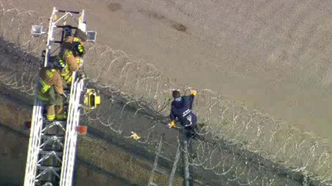 Person Stuck on Border Fence Freed