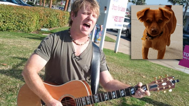 Man Holds Street Concerts for Lost Dog