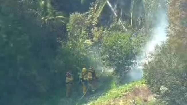 Crews Knock Down Clairemont Brush Fire
