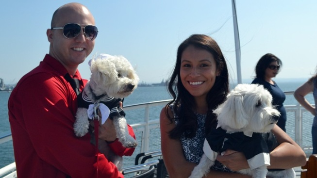 Sailing Woofers Help Home-Needing Pets