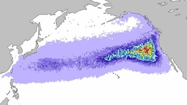 Animation Shows Path of Japan Debris Flow