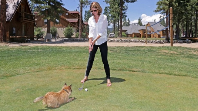 Pup-Putt: Resort Welcomes Dogs on Golf Course