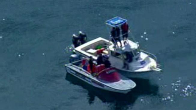 Dolphin Rescued Off La Jolla Coast