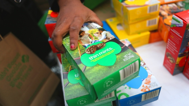 Calif. Man Pilfers $370K From Girl Scouts in Dead Brother's Name: Feds