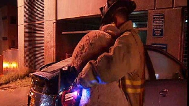 Woman, Giant Teddy Bear Soaked After Hitting Hydrant