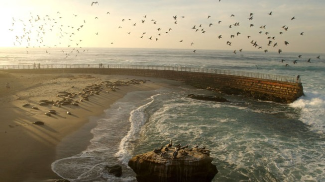 La Jolla Ranked Happiest Seaside Town