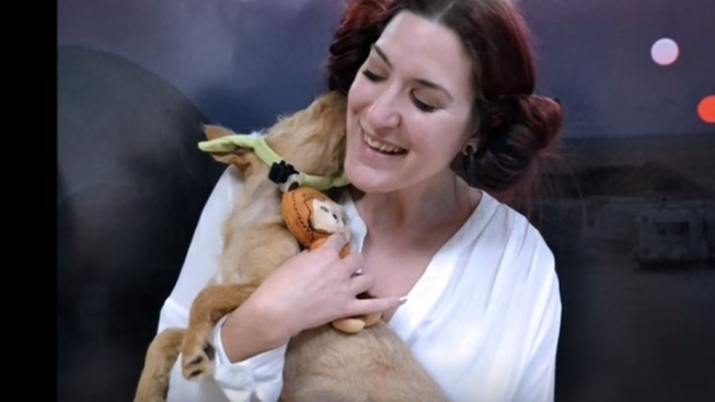 Paw Wars: Awww Over Dog Adoption Video