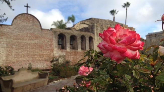 Swallows Day at Mission San Juan Capistrano