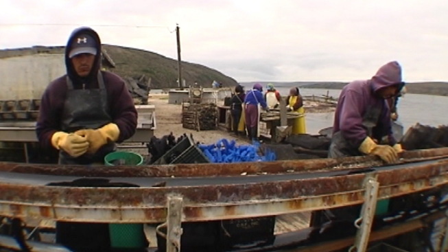 Supreme Court Turns Down Drakes Bay Point Reyes Oyster Farm Appeal