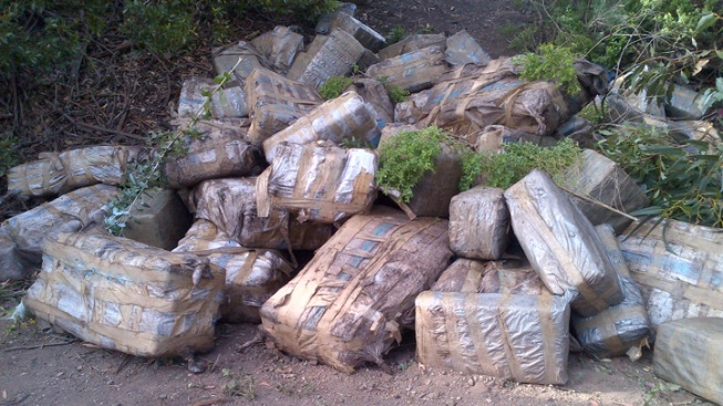 $4M Worth of Marijuana, Smuggling Boat Found on California Beach