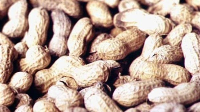 Texas Woman Seeks $1M For Slipping on Nut Shells