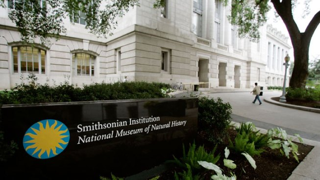 Smithsonian Faces $65M Cut in Congress' Budget