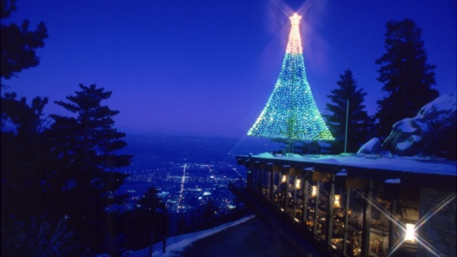 Tram Tree Time: Holiday Above Palm Springs