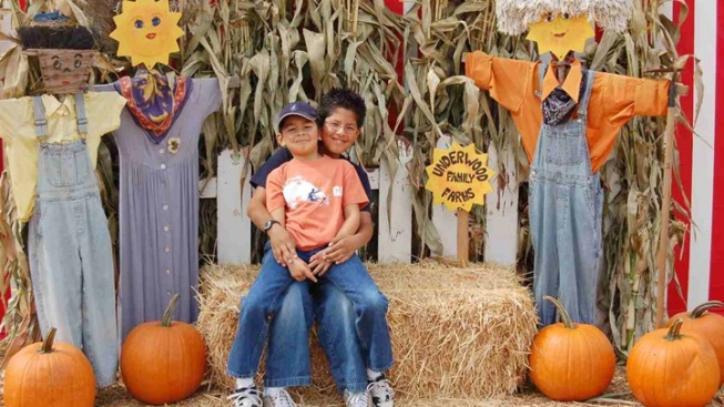 Pumpkins Galore: Underwood Family Farms