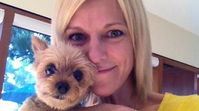 Yorkie Taken By Dognappers Dropped Off Safe at Home