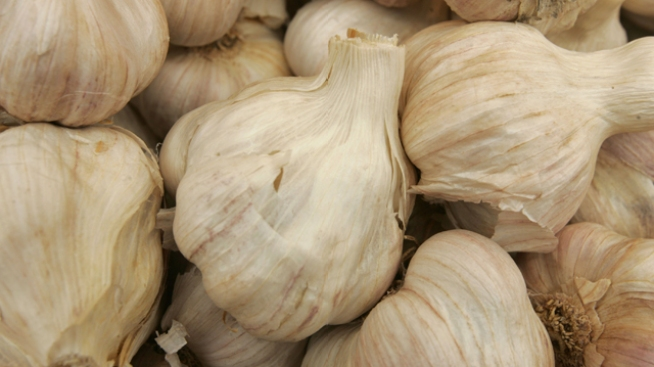 Garlic Cook-off: Time for Young Chefs to Enter