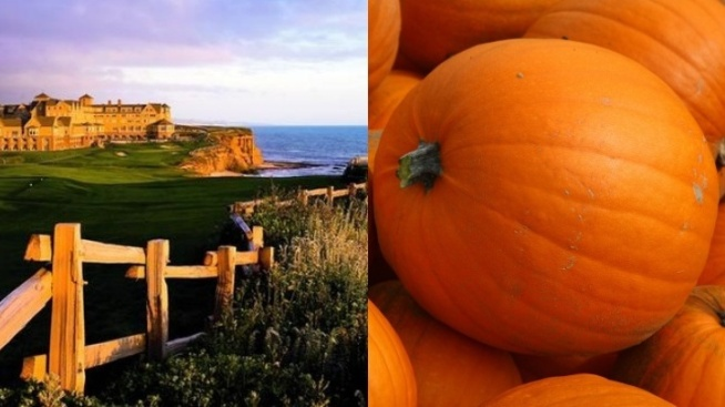 Autumn Pleasures Rule The Ritz-Carlton, Half Moon Bay