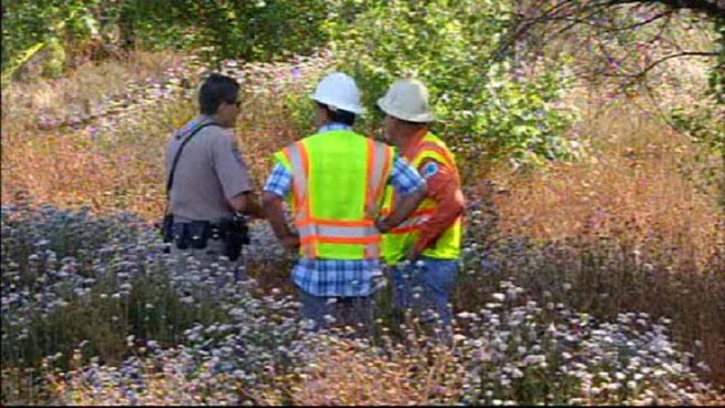 Caltrans Worker Struck and Killed Along Interstate 15: Images