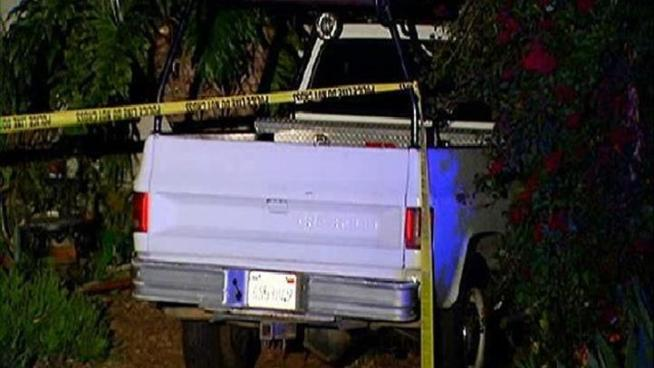 Police have issued an alert for a pickup truck carrying palm trees in its bed in connection with a Carlsbad homicide.