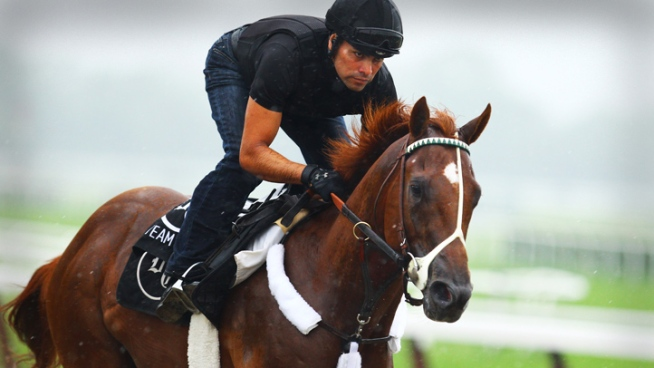 Triple Crown hopeful I'll Have Another gallops at Belmont Park as he prepares for the June 9 Belmont Stakes.