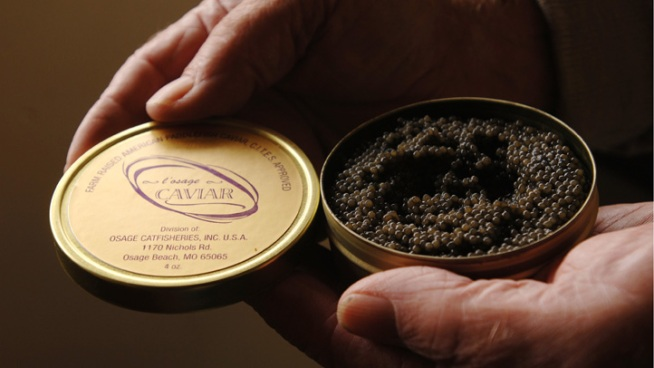 LA Malls Unveil Caviar Vending Machines