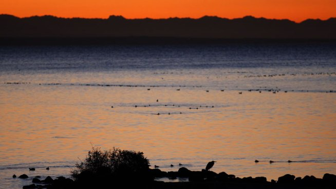 Powerful Stink From Salton Sea Could be Monitored
