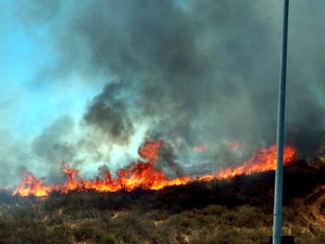 Images: Poway Brush Fire