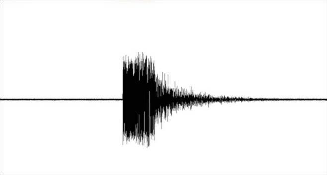 Early Quake Warning System Expands to Oregon, Washington