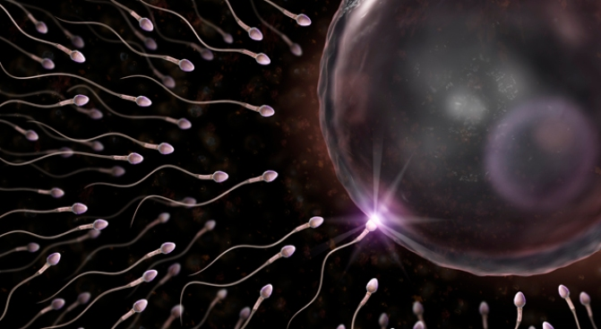 California Bill Seeks Parental Rights for Sperm Donors