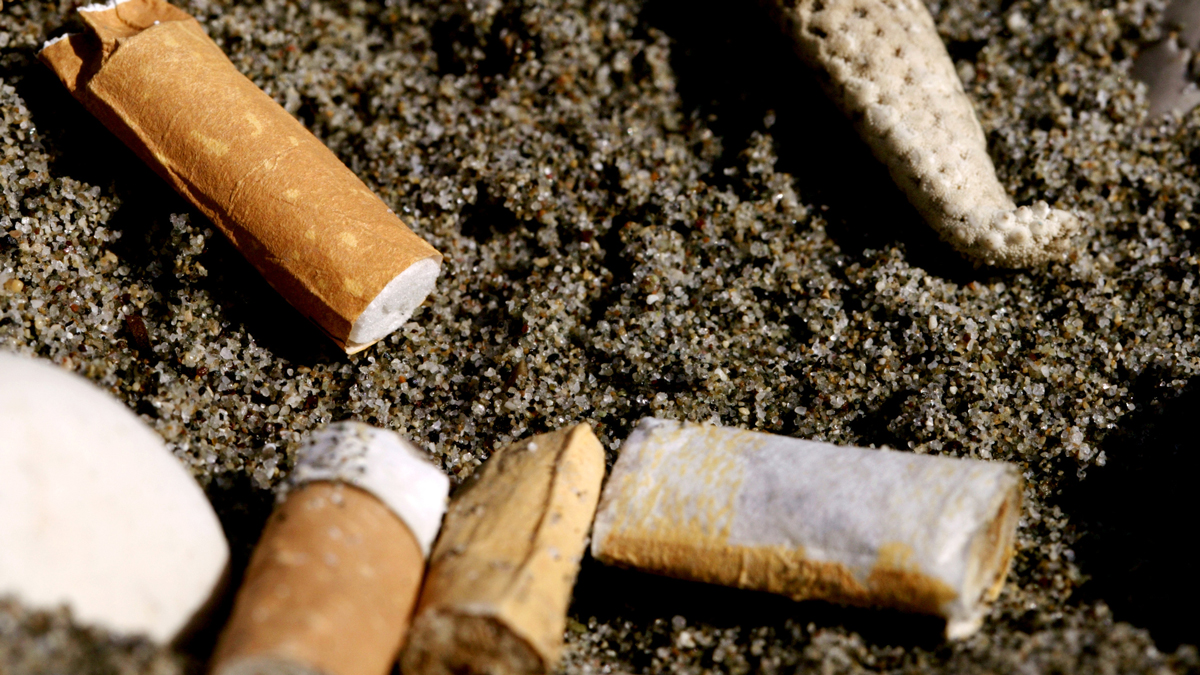 Lung Cancer Deaths Are 28 Percent Lower in California: UCSD