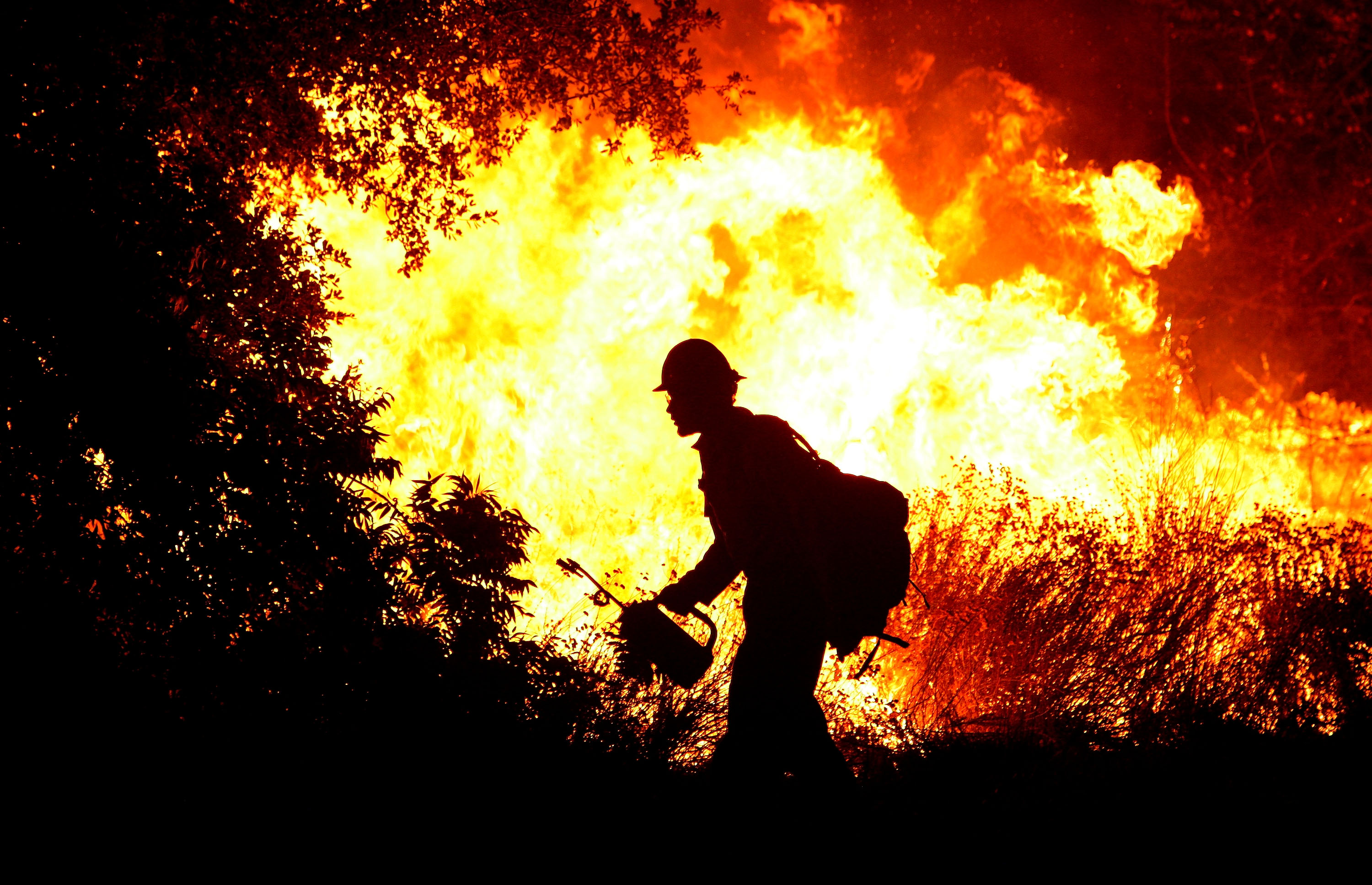 A firefighter uses a drip torch to light a back fire August 31, 2009 in La Crescenta, California.