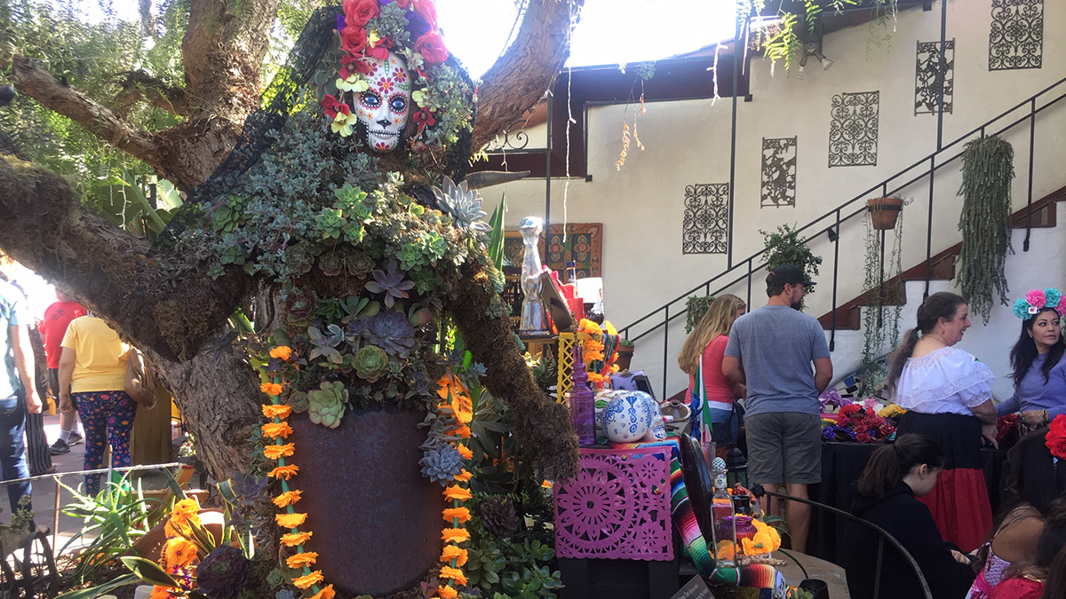 NBC 7 and Telemundo 20 celebrated Dia de Los Muertos in Old Town San Diego on Nov. 3, 2018. The event runs through 9 p.m. Saturday and returns Sunday. Come by our booth to say hello!