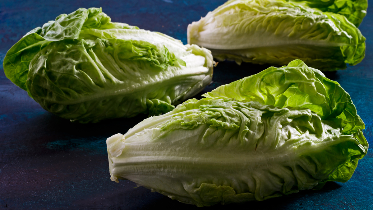 A stock photo shows romaine lettuce on blue backdrop.