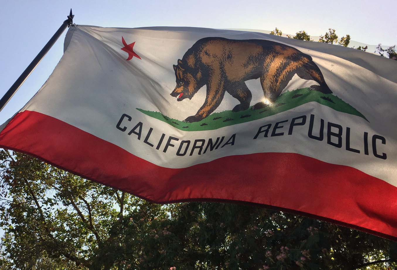 The history of the official flag of California dates to 1846, when California was still a territory of Mexico. A group of settlers took over the Mexican garrison at Sonoma, where they raised the hastily designed flag featuring a grizzly bear and lone star. California was declared a state four years later, but the flag was not adopted by the State Legislature until 1911.