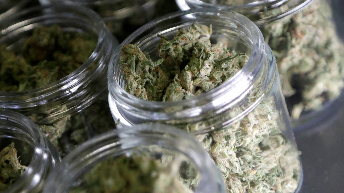 State Supreme Court Rules Against San Diego in Dispensary Lawsuit