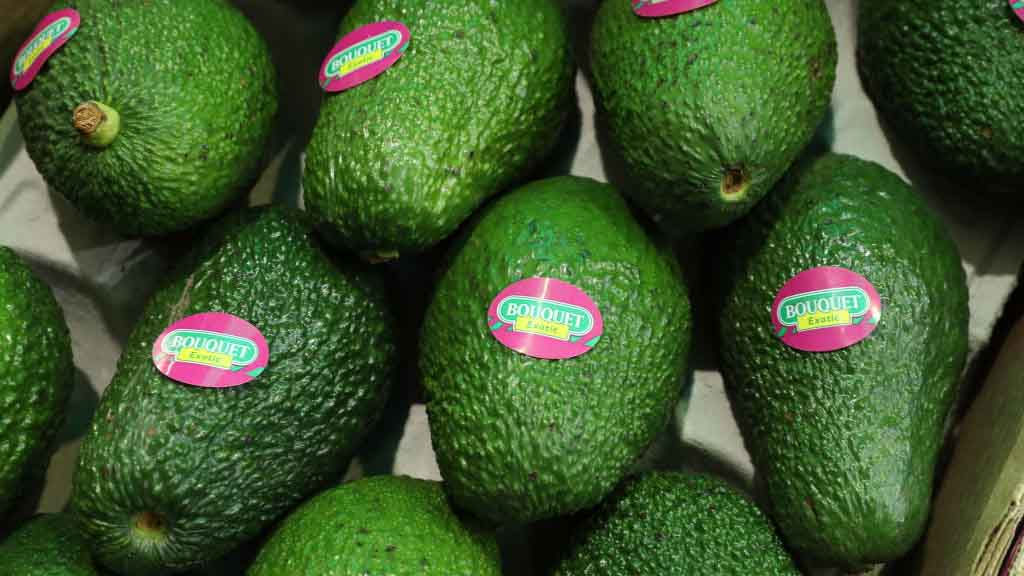 BERLIN, GERMANY - FEBRUARY 08: Avocados lie on display at a Spanish producer's stand at the Fruit Logistica agricultural trade fair on February 8, 2017 in Berlin, Germany. The fair, which takes place from February 8-10, is taking place amidst poor weather and harvest conditions in Spain that have led to price increases and even rationing at supmermarkets for fresh vegetables across Europe. (Photo by Sean Gallup/Getty Images)